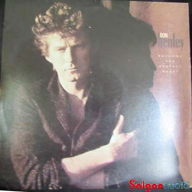 Đĩa than LP Don Henley - Building The Perfect Beast