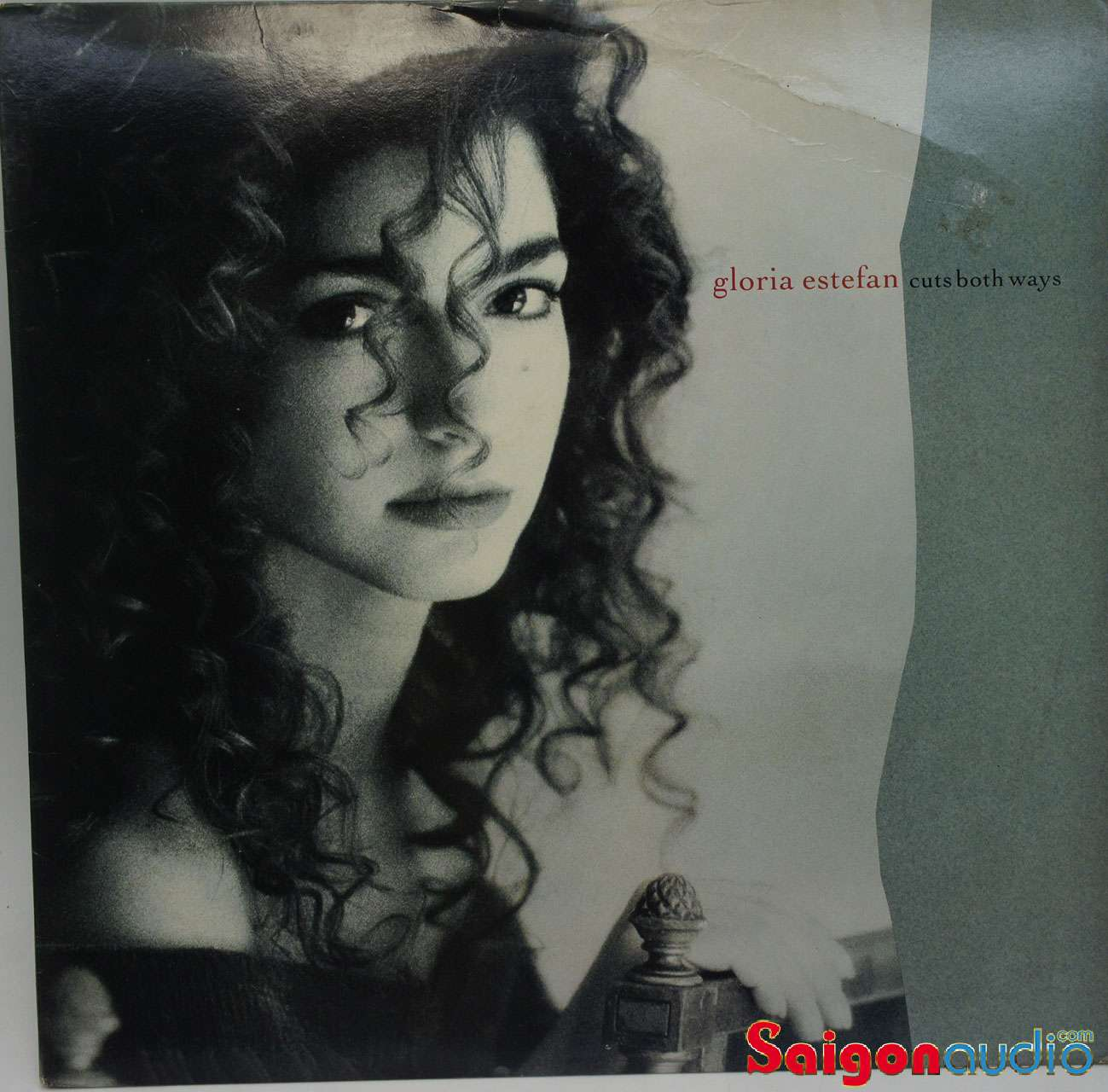 Đĩa than LP Gloria Estefan - Cuts Both Ways (1989)
